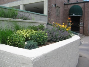 Photograph of planting beds full of an attractive arrangement of blooming plants